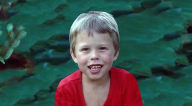Từ nhỏ, Elon Musk được nhận xét là một đứa trẻ hướng nội và bộc lộ khả năng hơn người.