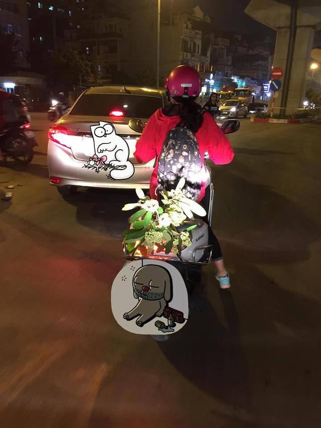 Có cô gái vẫn yêu hoa sữa đến mức phải chở một cành hoa về nhà. Ảnh: Mạng xã hội.