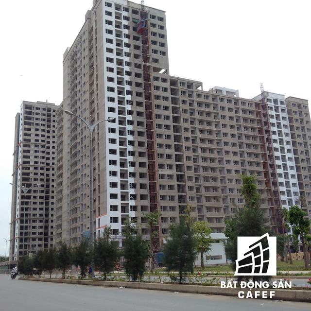 Dự án này do Thuận Việt xây dựng đang hoàn thiện mặt ngoài các tòa nhà chung cư.