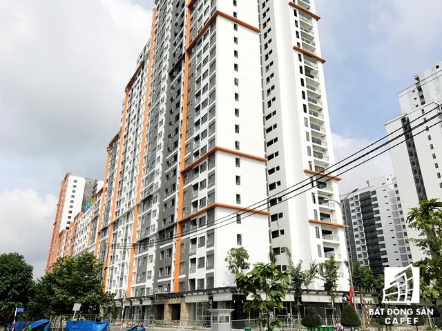 Dự án thuộc khu tái định cư nhưng đã mang một cái tên rất mới là New City