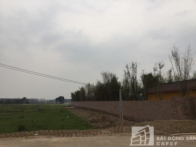 Một phần Khu du lịch sinh thái và vui chơi giải trí Tuần Châu Hà Nội đã GPMB xong đang được quây rào triển khai.