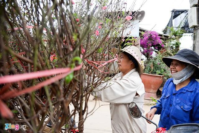 """Thương lái đến mua những cành đào nở sớm với giá 50.000-70.000 đồng tại vườn Nhật Tân (Tây Hồ, Hà Nội).            Anh Hồng - chủ một vườn đào 2.000 gốc ở làng hoa nổi tiếng Hà thành, cho biết năm nay có nhiều đào thế độc lạ nên được người mua và thuê đặt từ sớm. Giá thuê mỗi gốc đào 10-15 triệu đồng, nếu khách muốn mua đứt thì phải thêm 5-7 triệu đồng.            Một cây đào thế """"huyền"""" có giá thuê là 10 triệu đồng.            Các nhà vườn tạo nhiều thế độc đáo như """"huyền"""", """"trực"""", """"thông"""", """"huynh đệ""""…            Tại chợ Quảng Bá, phần lớn các tiểu thương bày bán đào cành mà không có cây. Anh Hoàng Ngọc (Nhật Tân, Hà Nội) cho biết giá dao động 500.000-700.000 đồng, cành nhỏ từ 150.000-200.000 đồng. Giá này có thể tăng gấp đôi trong khoảng hơn một tuần nữa.            Thời điểm này nhiều khách đã ghé chợ mua cành đào nhỏ đón xuân sớm.            Cành đào có giá 800.000 đồng và được chở đến tận nhà người mua.            Đến 15 tháng Chạp mới vào mùa tất bật việc bán hoa đào nhưng những ngày gần đây, trên đường Lạc Long Quân, Võ Chí Công, hàng chục cửa hàng, nhà vườn đã bày khắp con phố thu hút khách ghé xem.            Chủ hàng đào Nguyễn Văn Quỳnh (Phú Thượng, Hà Nội) chia sẻ: """"Chưa thực sự vào mùa nên tôi mới chỉ bày bán những gốc có giá cao nhất là 15 triệu đồng. Những cây quý hơn khách quen hàng năm đã đặt từ sớm"""".            Vườn đào của anh Tuấn Anh trên đường Lạc Long Quân bày 20 đến 25 gốc đào với giá thuê từ 15 đến 40 triệu đồng/gốc. Ước tính trong đợt Tết năm nay, anh sẽ bán và cho thuê khoảng 300 gốc.            Cây đào thế """"long phụng sum vầy"""" có giá thuê 40 triệu đồng. Khách hàng chủ yếu là các công ty, cơ quan và có thể """"chơi"""" đào cả tháng Tết.            Ngoài dáng độc đáo, lạ mắt, anh Tuấn Anh cho biết để cây đào có giá thuê cao như thế còn do bông hoa to hơn các loại khác, màu sắc rực rỡ hơn, nở kéo dài đến giữa tháng Giêng và thời gian chăm sóc cây kéo dài từ 4 đến 5 năm."""