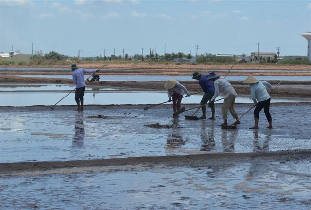 Người dân làm muối Bến Tre đã bắt đầu cải tạo chuẩn bị vụ mùa mới...