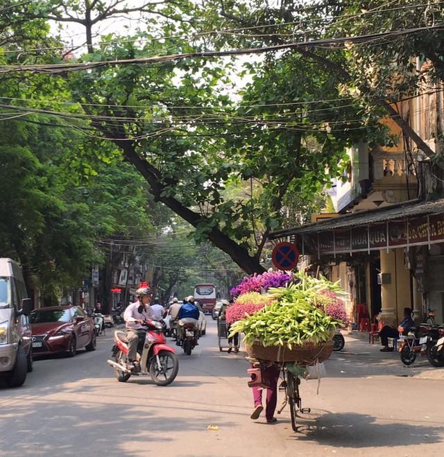 Hoa loa kèn với sắc trắng tinh khôi ngập tràn phố phường Hà Nội những ngày tháng Tư - Ảnh Nguyễn Huyền Diệu