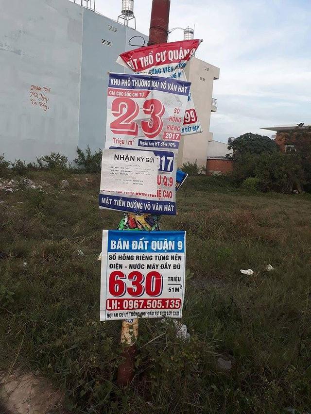 Đất nền, chung cư biệt được quảng cáo khá rình rang trên nhiều cây xanh, cột đện.