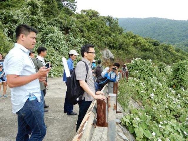 Phó Thủ tướng Vũ Đức Đam khảo sát trên núi Sơn Trà. Ảnh: VTCNews