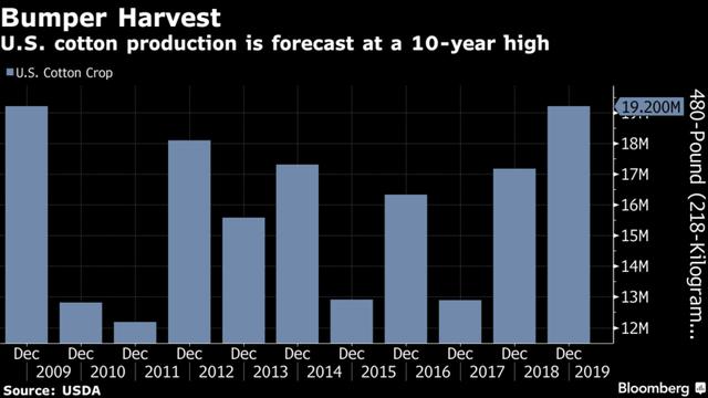 Sản lượng bông tại Mỹ tăng cao kỷ lục