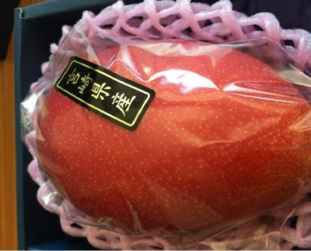 Xoài Nhật được bán tại thị trường Việt với giá 1,7 triệu đồng/quả