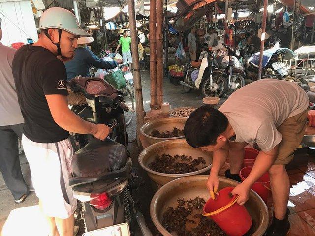 Hà Nội nắng nóng kỷ lục, cua đồng tại chợ tăng giá mạnh