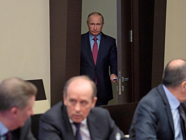 Tổng thống Nga hay thức đêm để làm việc. Theo Newsweek, ông Putin làm việc hiệu quả nhất về đêm.</p></div><div></div></div><p> </p><p>Trong các chuyến công du nước ngoài của ông Putin, cho dù ông ở đâu, tất cả mọi thứ từ ga trải giường, giấy toilet cho tới đĩa đựng hoa quả trong phòng đều được thay thế bằng đồ riêng. Thức ăn phục vụ ông cũng phải được nhân viên của điện Kremlin kiểm tra trước.</p><p>