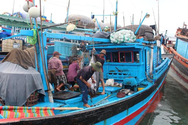Khai thác cá ngừ đại dương