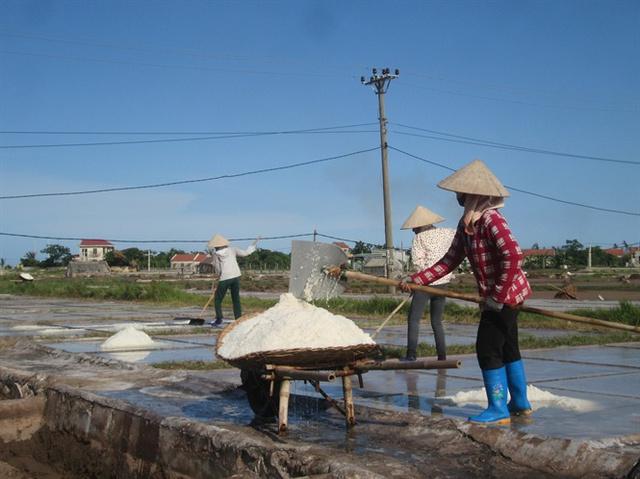 Người dân thu hoạch muối