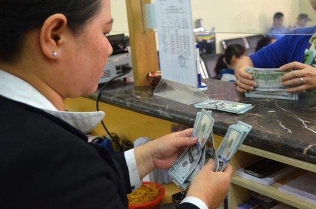Tỉ giá trung tâm tăng nhưng thị trường ngoại hối vẫn ổn định Ảnh: TẤN THẠNH