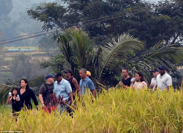 Gia đình cựu Tổng thống Obama đi dạo qua cánh đồng lúa tại Bali.
