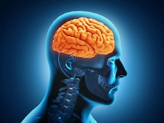 Tăng cường chức năng não: Ăn chay có nhiều tác động tích cực lên não, cơ quan quan trọng nhất của cơ thể. Một protein được gọi là yếu tố thần kinh có nguồn gốc từ não (BDNF), rất hữu ích trong sự phát triển của các tế bào thần kinh khỏe mạnh và tăng cường giao tiếp giữa các tế bào thần kinh. Điều này được thúc đẩy bằng việc ăn chay. Và do đó làm giảm nguy mắc bệnh Alzheimer, sa sút trí tuệ, trầm cảm...