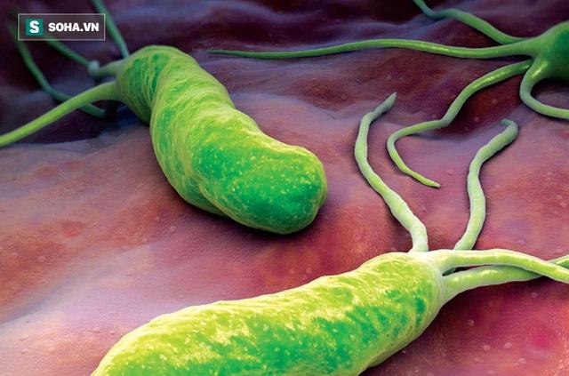 Vi khuẩn HP gây ung thư