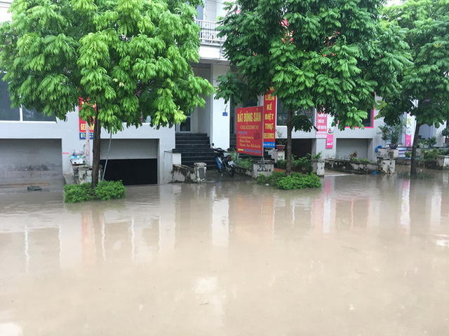 Nhiều cư dân ở đây vẫn nói với nhau cứ mưa to là họ rẽ sóng ra khơi, được đi thuyền trên phố, được bắt cá trên phố.