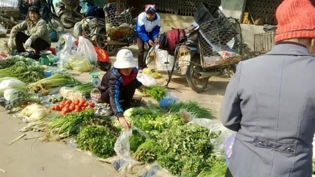 Nhiều loại rau xanh rữa nát vì mưa nhiều.