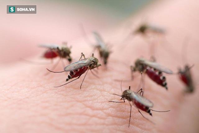 Ở Việt Nam, chủ yếu là sốt xuất huyết do virus Dengue, nên còn gọi là Bệnh Dengue xuất huyết.