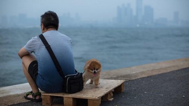 Người Hồng Kông quá bận rộn vì công việc nên không còn thời gian để yêu đương.