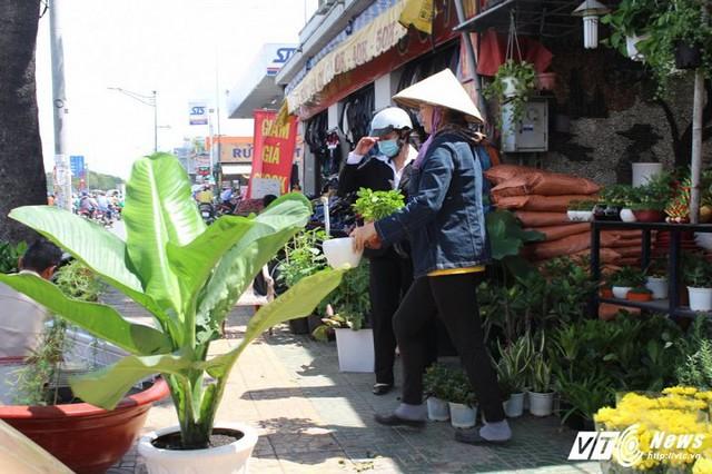 Những ngày này, khu vực đường Trường Chinh gần sân bay Tân Sơn Nhất tấp nập người mua bán.