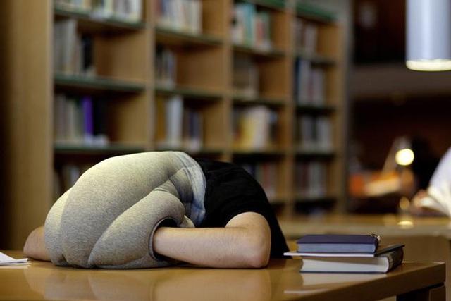 Nghỉ trưa giữa các buổi học/làm có thể tăng đáng kể sức tập trung