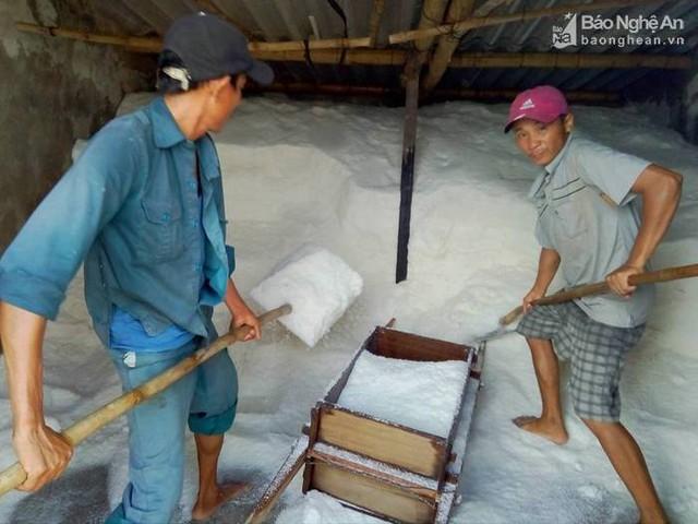 Muối tiêu thụ mạnh, các cửu vạn bốc muối phải làm việc hết công suất. Ảnh Như Thủy