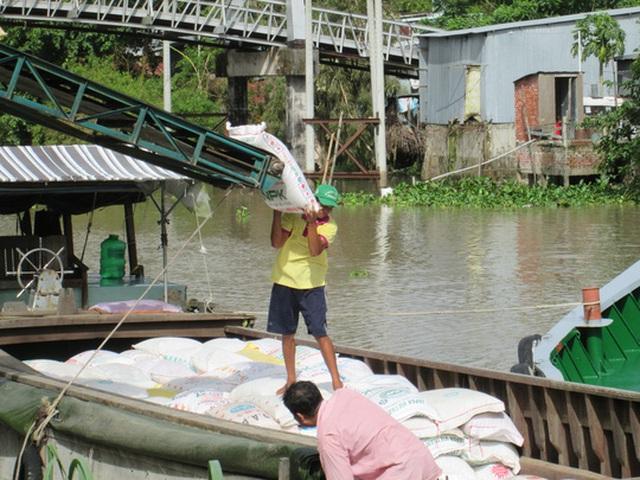Chuyển gạo xuống ghe để đưa ra cảng xuất khẩu Ảnh: VƯƠNG NGỌC