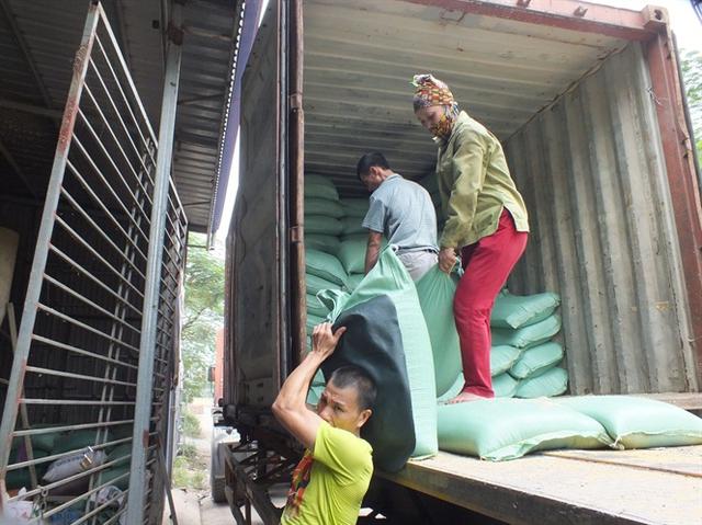 Gạo chuyển từ các tỉnh phía Nam về vựa xay xát, kinh doanh gạo tại thị trấn Yên Mỹ (Hưng Yên)