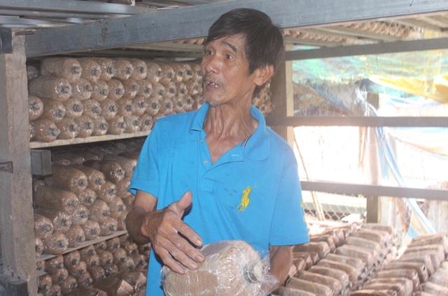 Ông Lê Văn Út, chủ trại nấm Tám Phấn (Bình Thuỷ, Cần Thơ).