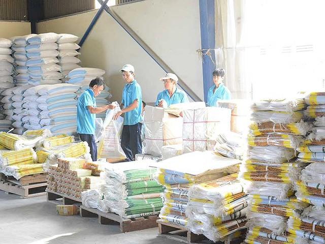 Hạt gạo xuất khẩu hiện nay vẫn còn vướng nhiều loại giấy phép con, thủ tục rối rắm cần được loại bỏ. Ảnh: QUANG HUY