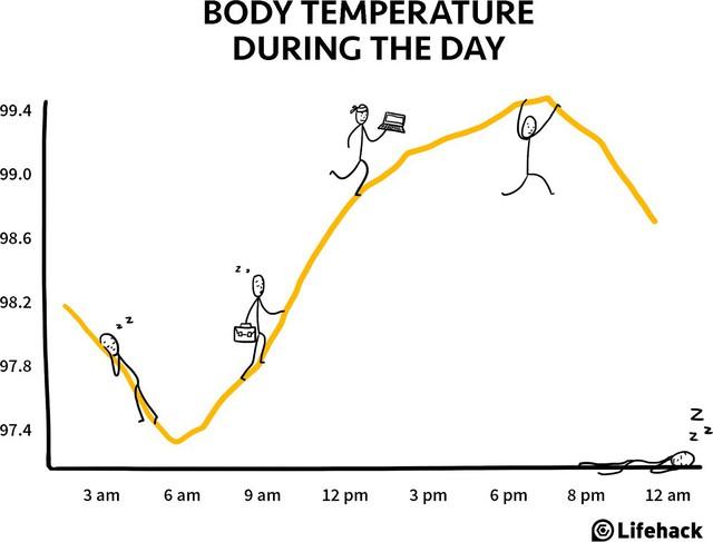 Nhiệt độ cơ thể chúng ta luôn thay đổi và tự điều chỉnh hằng ngày.