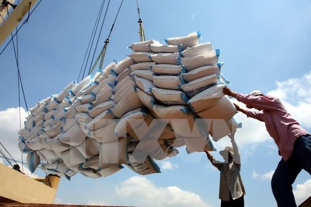 Việt Nam chủ yếu xấu khẩu gạo thô, chưa có thương hiệu. Ảnh: TTXVN