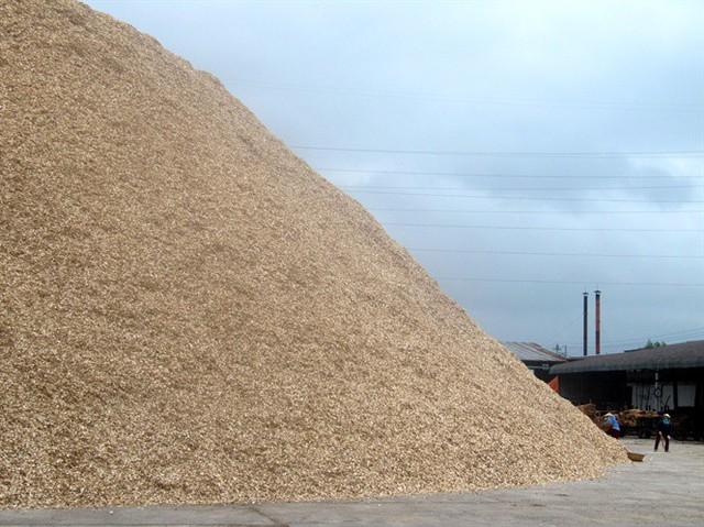 Do không xuất bán được sang Trung Quốc nên hiện Cty TNHH Sông Kôn còn tồn đọng 16.000 tấn dăm khô