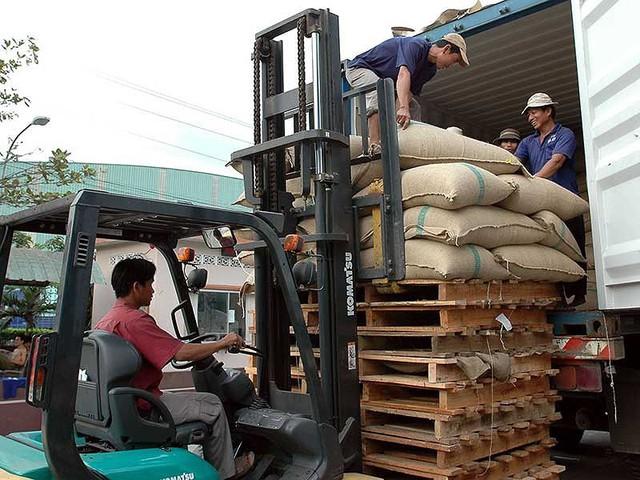 Việt Nam là nước xuất khẩu cà phê lớn thứ hai thế giới nhưng chủ yếu xuất khẩu dạng thô. Ảnh: HỮU LUẬN