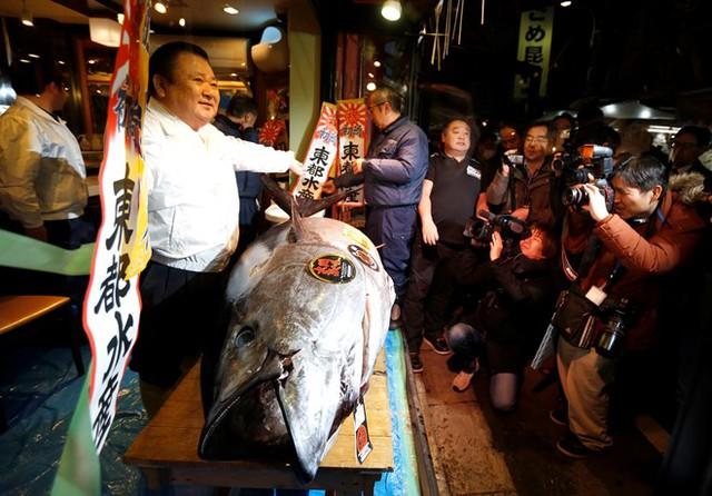Kiyoshi Kimura còn được mệnh danh là vua cá ngừ. Ông cũng là người mua được con cá ngừ giá cao kỷ lục (gần 1,8 triệu USD) vào năm 2013. Ảnh: Reuters.