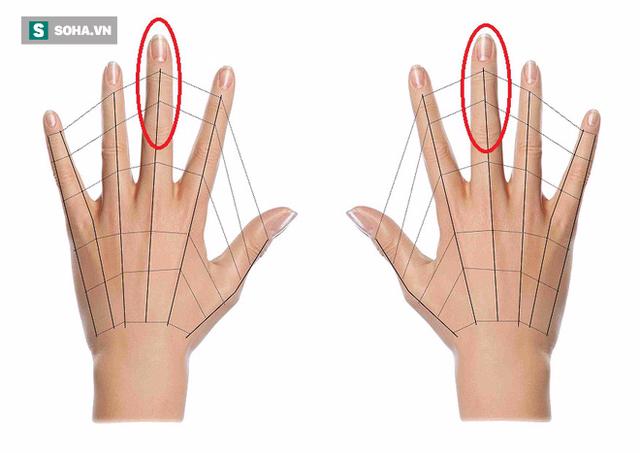 2 đốt ngón tay trên của ngón giữa là vùng đại diện của não bộ (Ảnh minh họa).