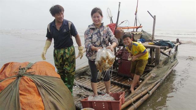 Niềm vui được mua sứa của ngư dân Diễn Hải