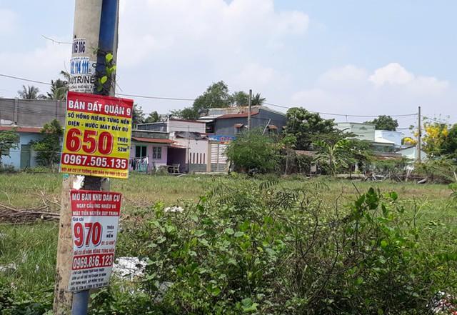 Khu vực đường Lã Xuân Oai chi chít các biển báo rao bán đất nền. Ảnh: Thái Nguyễn.