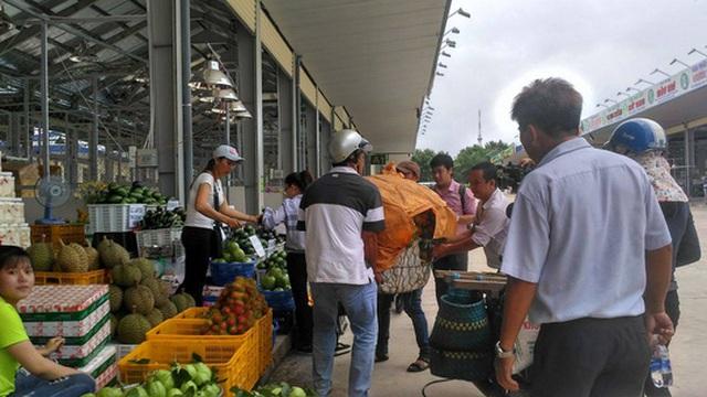 Nhà vườn cung cấp trái cây cho chợ sỉ