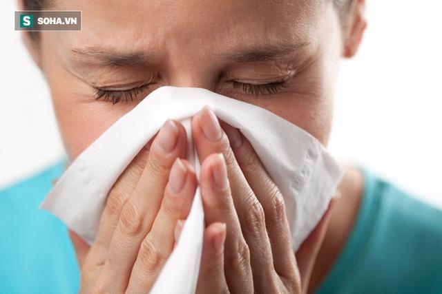 Mũi rất dễ bị viêm vì là cửa ngõ của cơ thể.