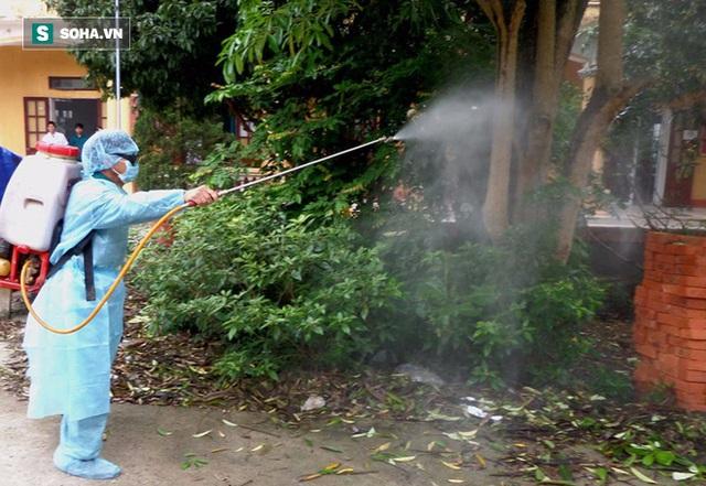 Việc phun thuốc muỗi chỉ giải quyết được phần nổi của sốt xuất huyết