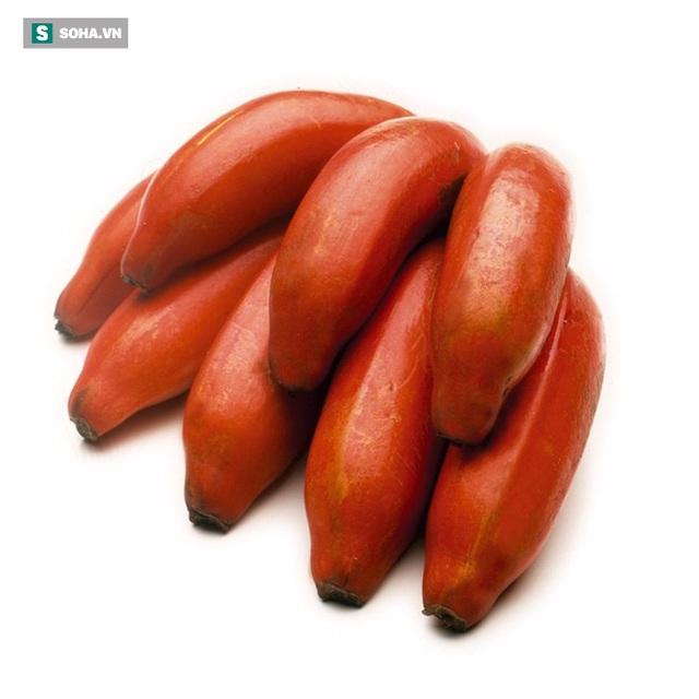 Chuối đỏ giảm hội chứng cai thuốc lá và tái nghiện.