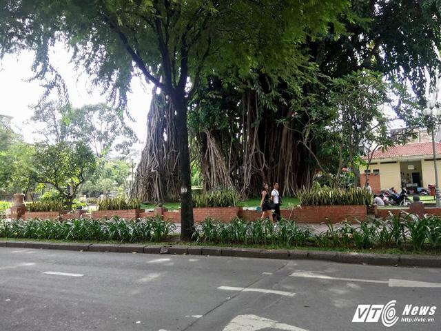 Công viên Bách Tùng Diệp là địa điểm kinh doanh hàng rong thứ 2 được TP.HCM phê duyệt.