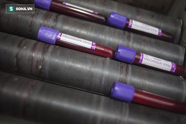 Grail hiện đang tiến hành 2 thử nghiệm lâm sàng trên khoảng 130.000 người
