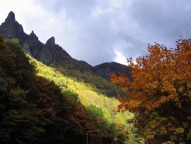 2. Công viên quốc gia tại Hokkaido. Là nơi mang vẻ đẹp hoang dã của núi rừng, đồng bằng, hồ nước và suối nước nóng - đây là địa điểm tuyệt vời để ngắm lá mùa thu. Các điểm yêu thích bao gồm Vườn Quốc gia Daisetsuzan - nơi đầu tiên ở Nhật Bản để xem màu sắc mùa thu vào giữa tháng 9 và bán đảo Shiretoko.