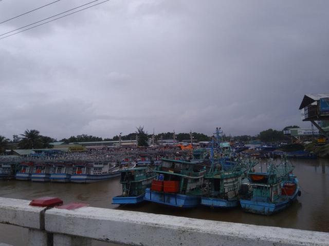 Tàu, thuyền neo đậu ở sông Dương Đông, huyện Phú Quốc