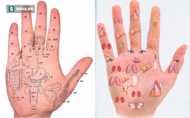 Chăm sóc và quan tâm bàn tay là một cách để bảo vệ sức khỏe nội tạng (Ảnh minh họa)