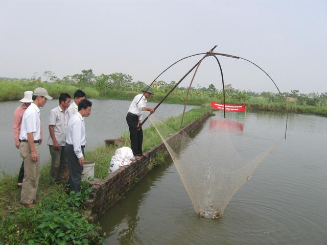 Lĩnh vực Nông lâm sản và Thủy sản dự kiến bãi bỏ 4 thủ tục - Ảnh: VGP/Đỗ Hương