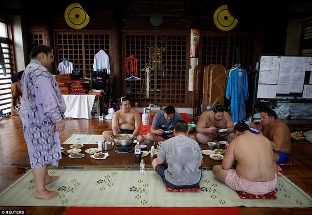 Các món ăn chính trong bữa ăn gồm có đùi lớn, cá trích rán giòn, gạo, chanko nabe - một món lẩu nóng đặc trưng dành cho dân sumo.